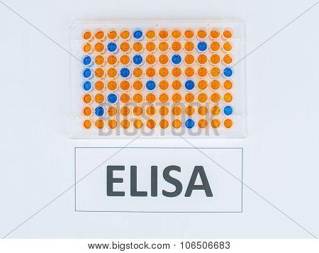 ELISA testing