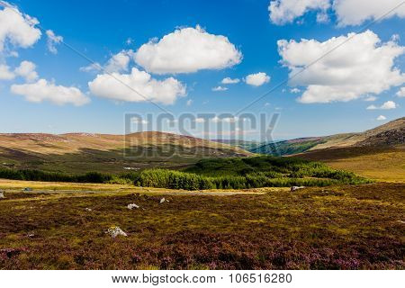 Wicklow Mountains In Ireland