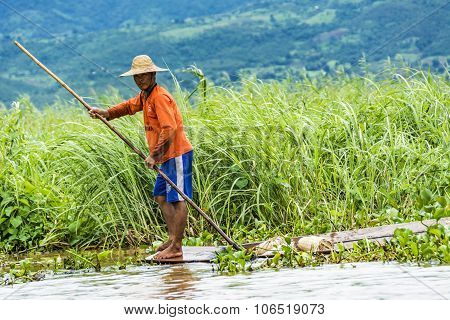 Intha Lake Farmer Controls His Field  In His Typical Canoe With A Bamboo Stick As Rudder