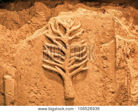 Signs Of Tree With Branches On Artificial Wall From Egypt
