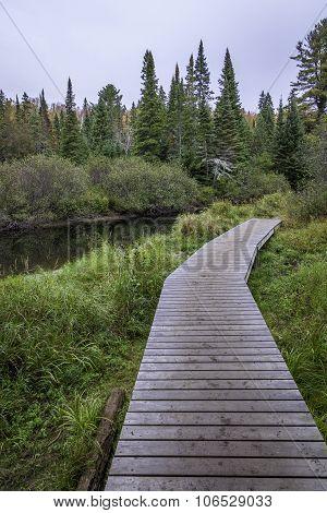 Wooden Boardwalk Next To A River - Algonquin Provincial Park