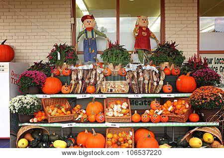 Green Grocer Stall Pumpkin Harvest