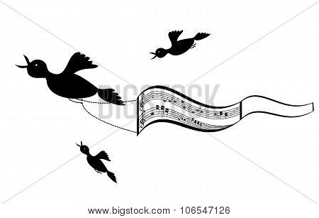 Flying birds with sheet music background