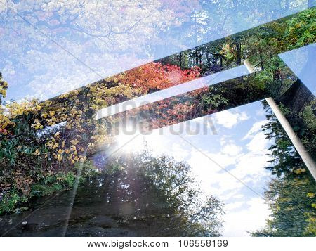 Double exposure Torii gate with autumn background poster