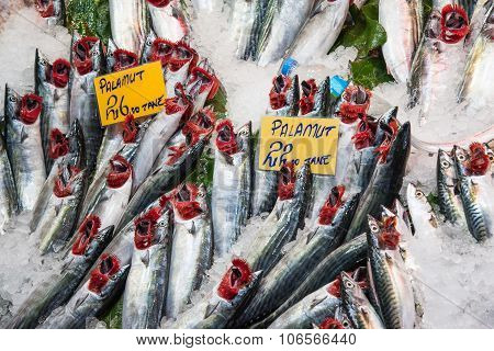 Fresh fish at a market in Istanbul