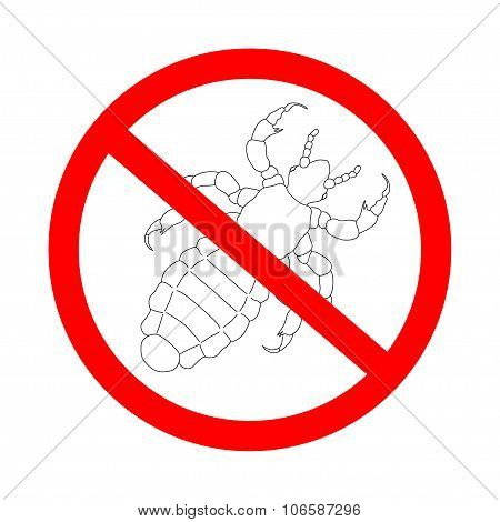 Prohibition Sign A Head  Human Louse. Pediculus Humanus Capitis. Sketch Of Louse.  Louse Isolated On