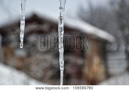 Icicles Hanging Down From The Roof, Winter Time, Snowy Day