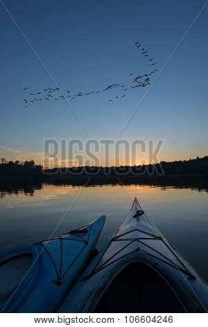 Kayaks At Sunset With A Flock Of Geese