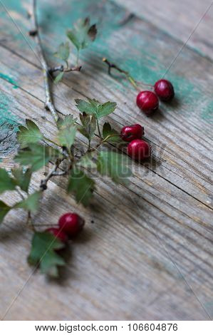 Hawberries On The Desk