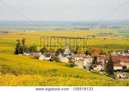 Champagne Wine Fields During Autumn. Village Of Oger.