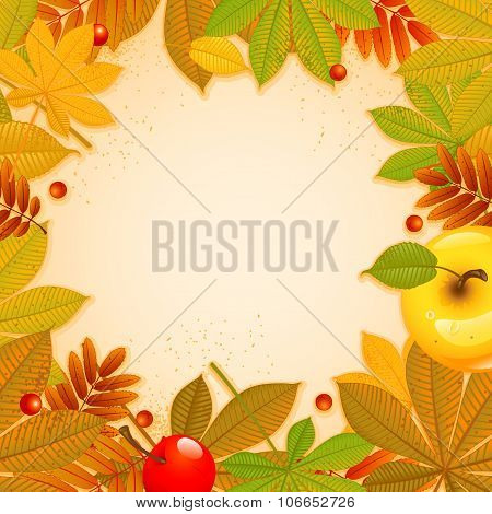Autumn background with leaf