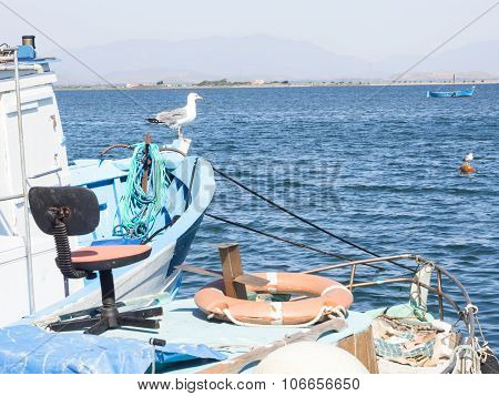 Seagull Chair Boat