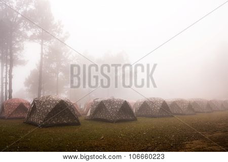 Camping Under  The Sea Mist
