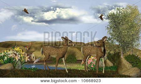 Our Deer Adventure