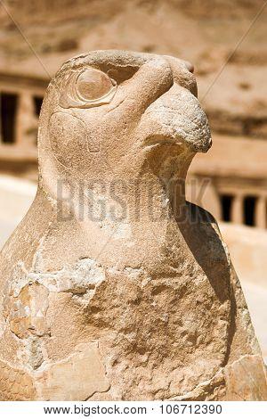 Staue Of Horus, Queen Hatshepsut Temple, Egypt