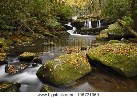 Trailing Falls In The Smokies