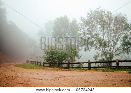 Road Through Forest With Fog And Misty