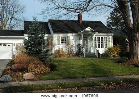 White & Green Home