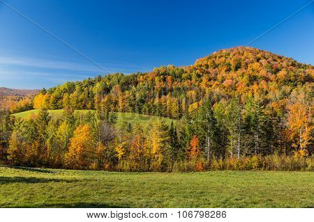 Autumn Foliage landscape In Vermont Countryside