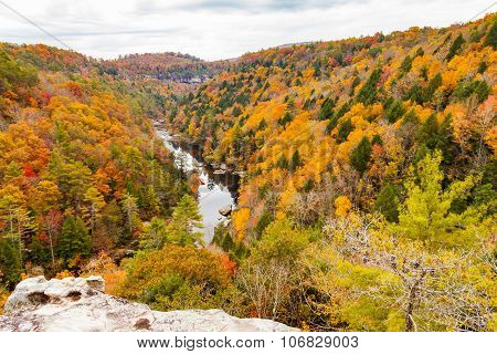 Lilly Bluff Overlook At Obed