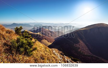 Scenic view of colorful misty mountain hills in fall Mala Fatra Slovakia poster