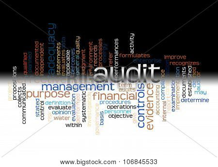 Word cloud of audit and its related words. poster