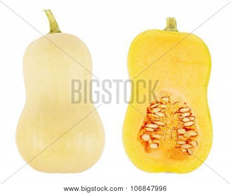 Butternut squash with cross section isolated on a white background