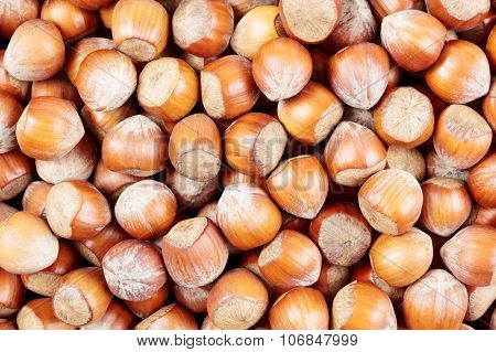 A heap of hazelnuts viewed from above