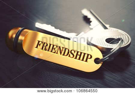 Keys with Word Friendship on Golden Label.