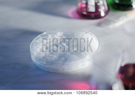 science, chemistry and people concept - close up of foaming chemical in petri dish on laboratory table