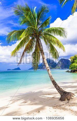 tropical paradise beach,Palawan, Philippines