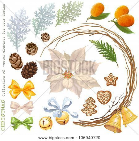 Christmas Collection of decorative vector elements with flower Poinsettia, pine cones, bells, dry branches, bows, kumquats and cookies, for your design.