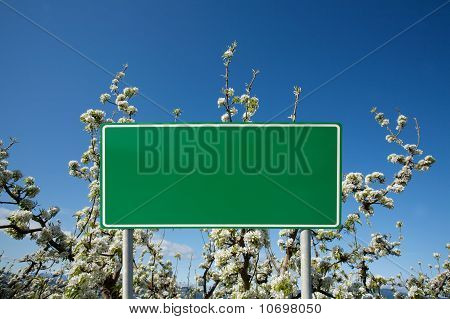 Green blank sign