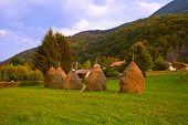 Hay in stacks - village in Serbia - travel background poster