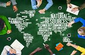 Natural Resources Environmental Conservation Sustainability Concept poster