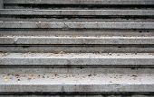 Close up of old granite stairs with fall leaves poster