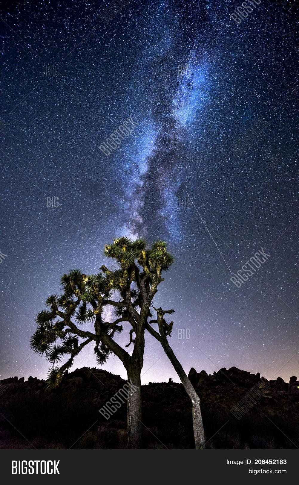 Night Sky Peppered Image Photo Free Trial Bigstock