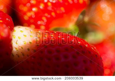 Strawberry background. Fresh red strawberry. Fruit background from freshly harvested strawberries. Fresh ripe perfect strawberry. Food Frame Closeup red berries harvest healthy food yogurt dessert