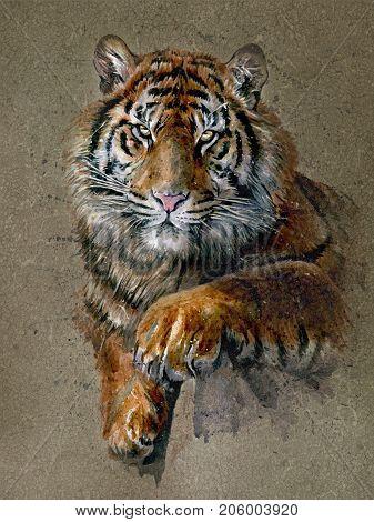 Tiger, animal, watercolor, wild, cat, predator, wildlife, art