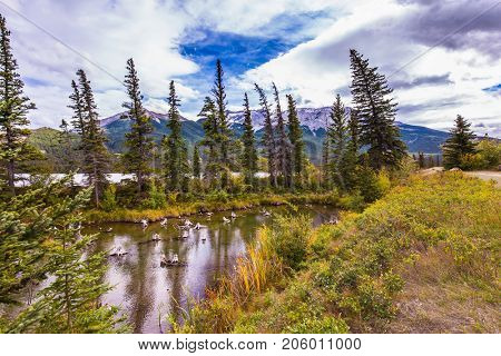 Lush clouds are reflected in the smooth water. Concept of active and ecological tourism. Shallow-water lakes, picturesque firs and distant mountains. The valley along the Pocahontas road