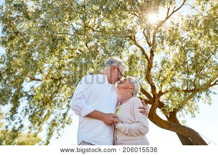 old age, love and people concept - happy senior couple nuzzling at summer park
