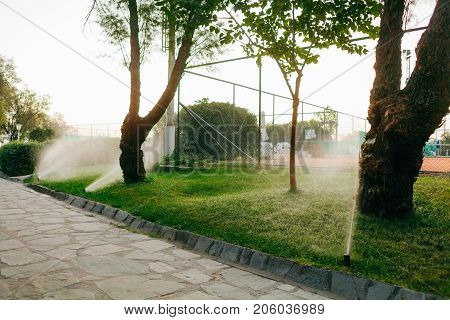 automatic drip irrigation system irrigate the hotel territory.