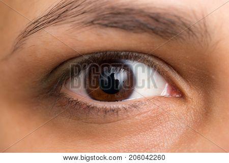 hazel eyes. macro . Photos in the studio