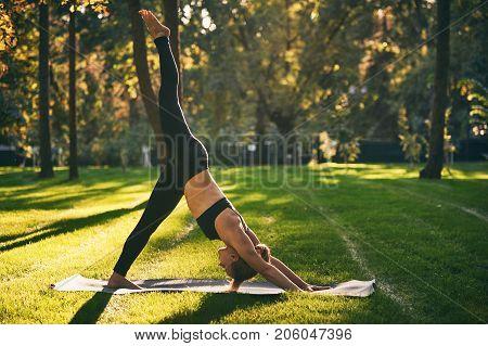 Beautiful sporty fit yogini woman practices yoga asana eka pada Adho Mukha Shvanasana - One Leg Downward Dog pose in the park at sunset