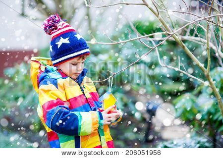 Little kid boy feeding birds in winter. Cute happy preschool child hanging colorful selfmade bird house on tree on frosty cold day. Toddler in colorful wam clothes putting seeds in feeder
