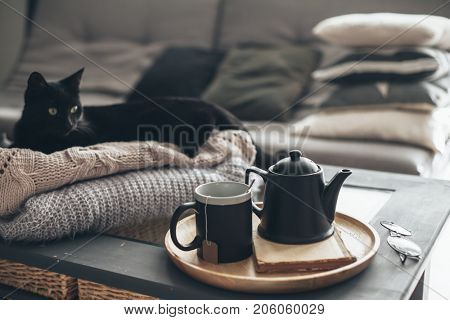 Still life details in home interior of living room. Black cat relaxing on sweater. Cup of tea on a serving tray on coffee table. Breakfast over sofa in morning sunlight. Cozy autumn or winter concept.
