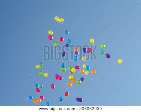 Colored balloons flies away into the sky
