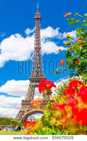 The Eiffel Tower and colorful flowers at the Champ de Mars on a beautiful summer day in Paris