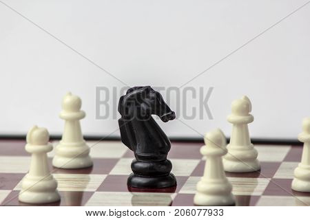 chess black horse surrounded by white pawns. concept of struggle. Isolated on white background.