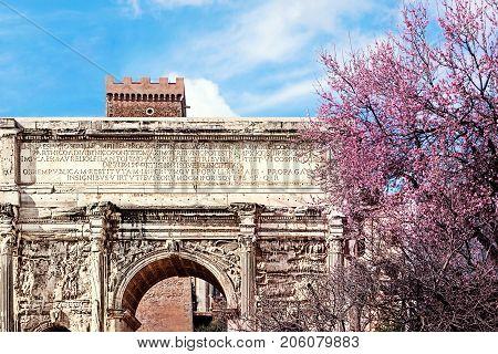 Septimius Severus Arch in spring. The Roman Forum. Rome Italy.